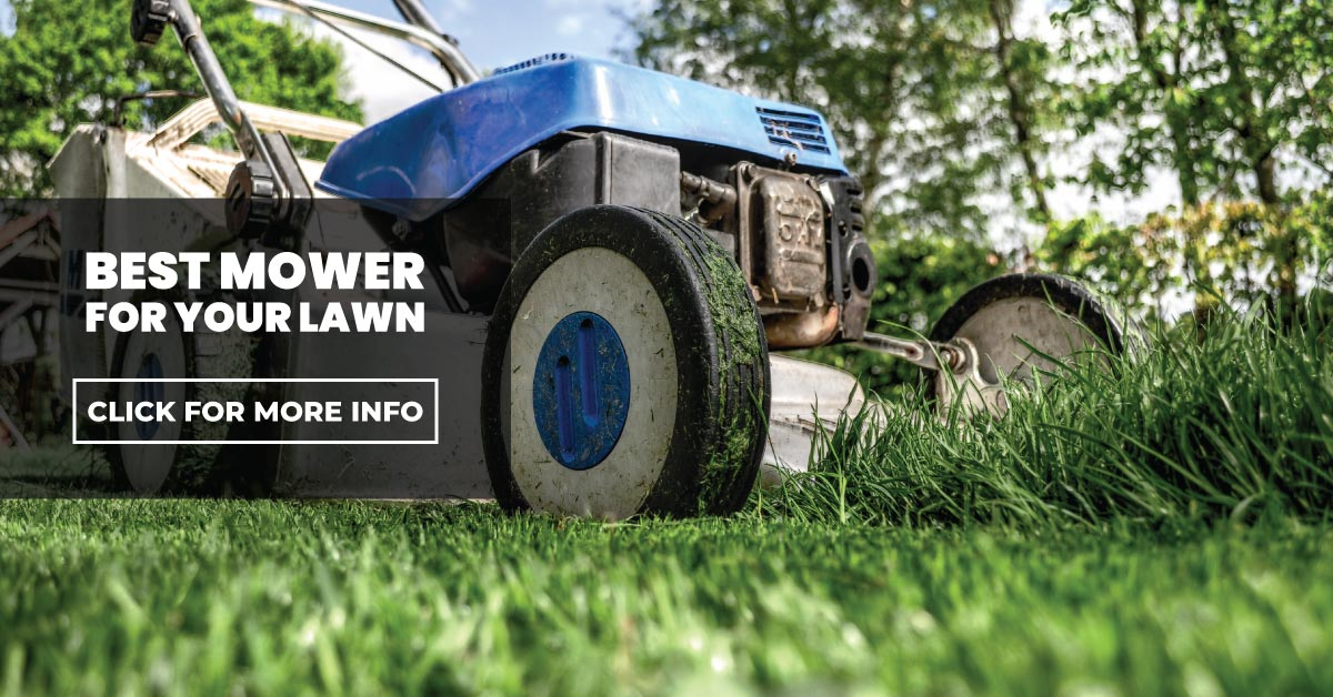 Best lawnmower for your lawn
