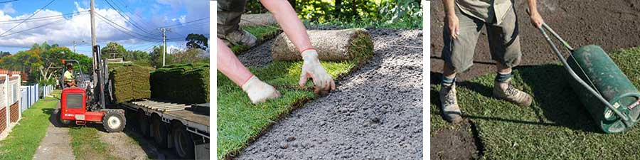 Lay a new lawn