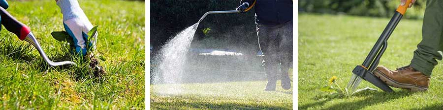 Three Autumn Lawn Care Tips