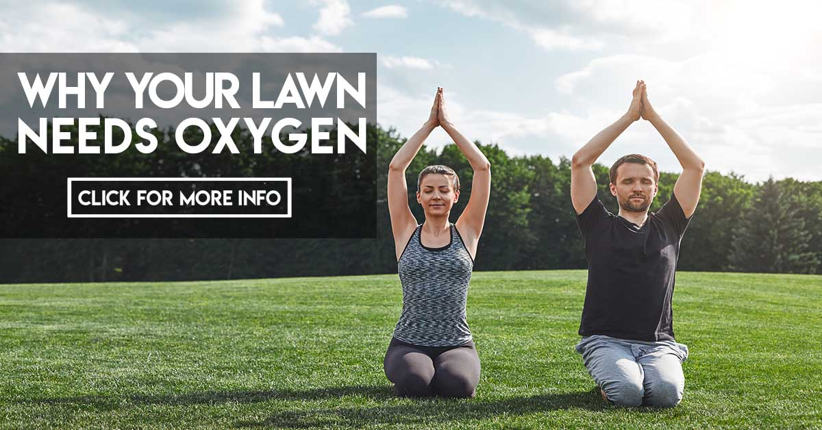 Why your lawn needs oxygen