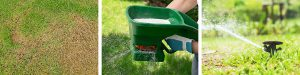 Knowing when to fertilise