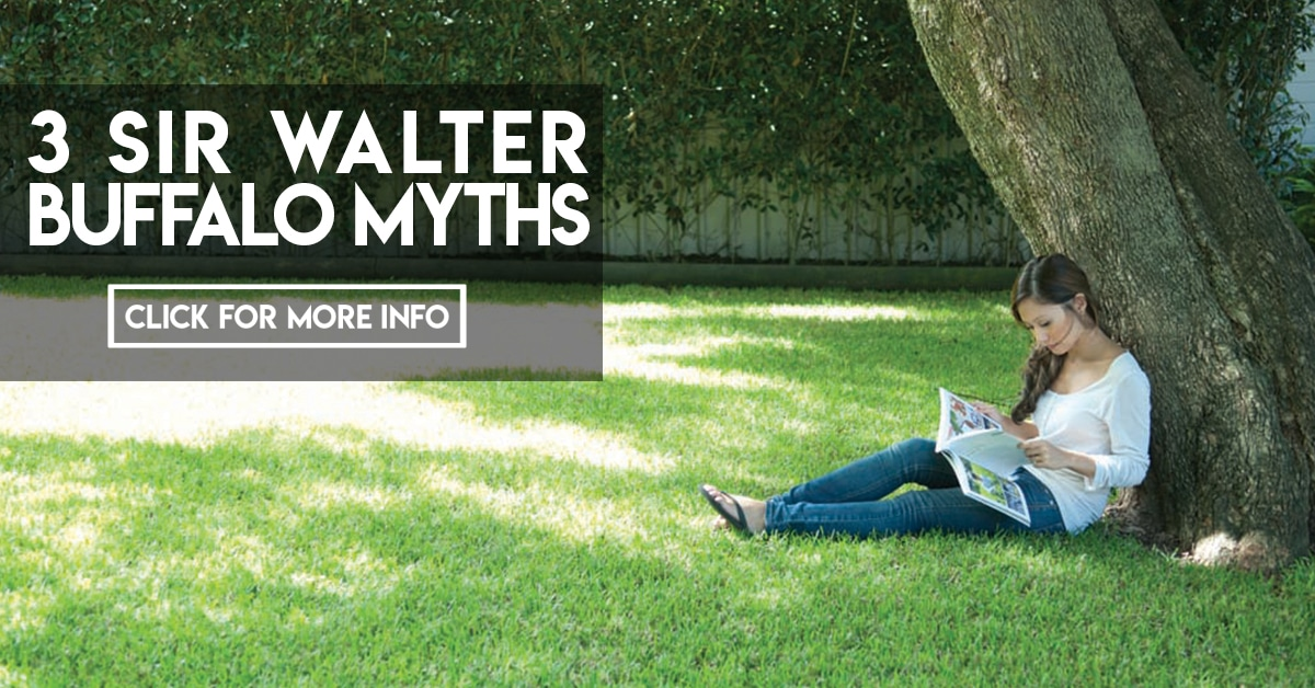 3 Sir Walter Buffalo Myths
