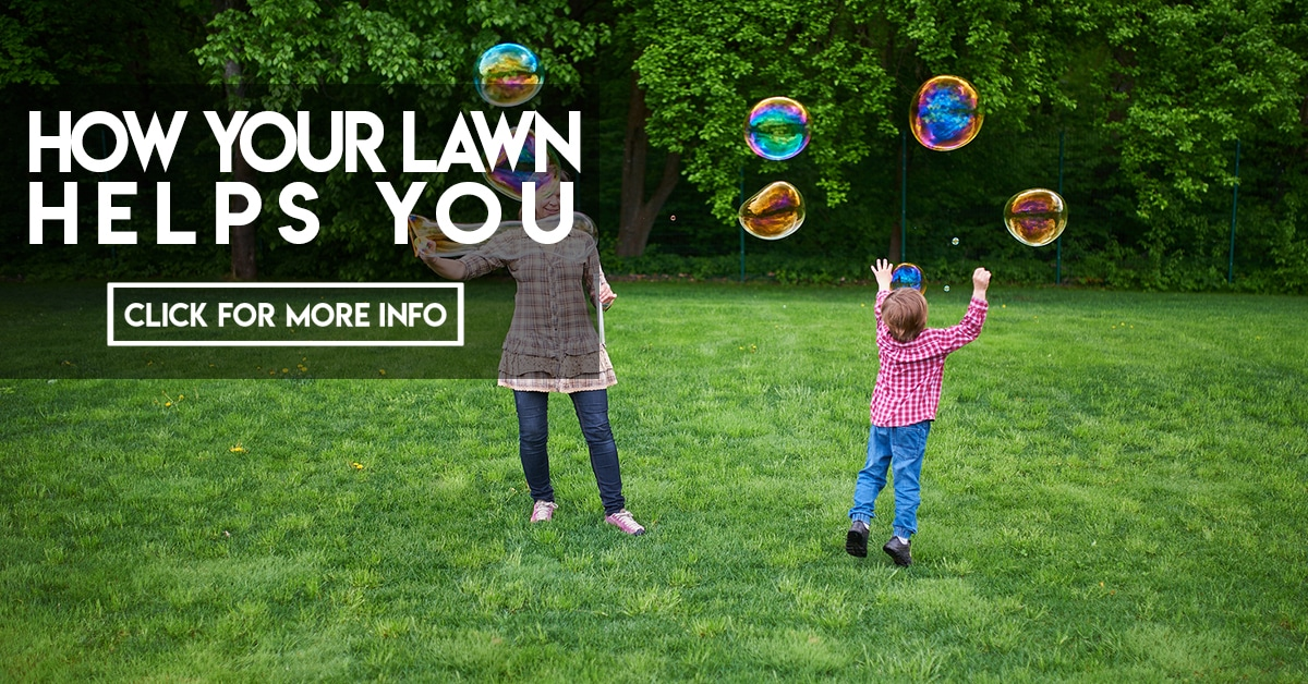 How Your Lawn Helps You