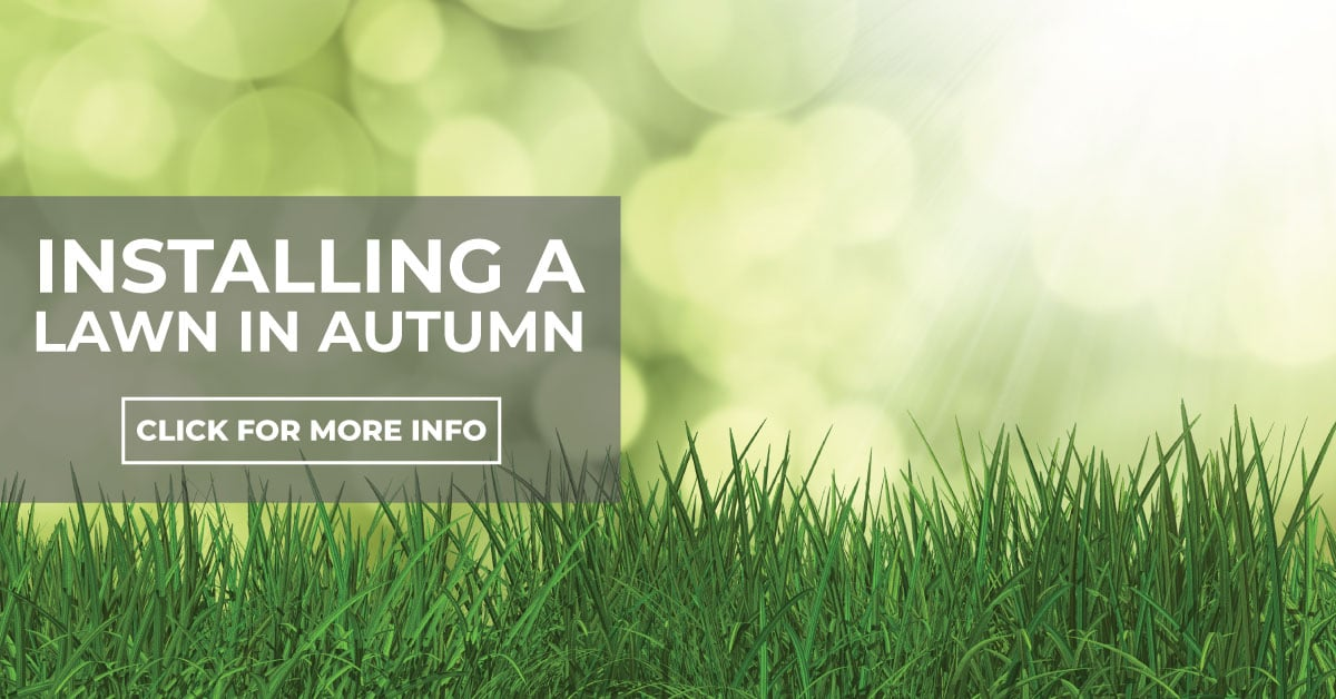 Installing A Lawn In Autumn