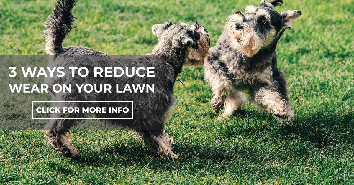Three Ways To Reduce Wear On Your Lawn