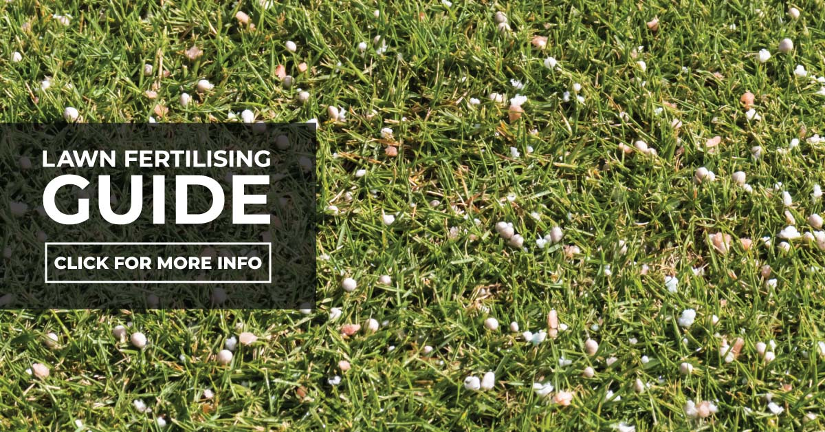 Lawn Fertilising Guide