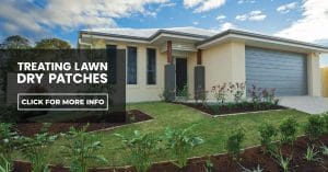 Treating lawn dry patches