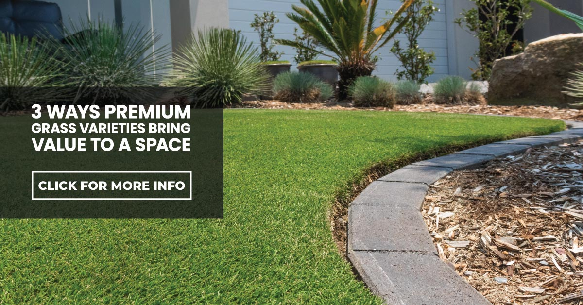 3 ways premium turfgrass varieties bring value to a space